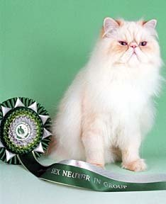 best in show neuter
